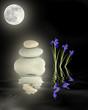 Zen Garden Under Full Moon
