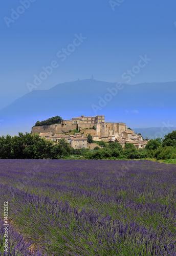Foto op Plexiglas Lavendel lavande de grignan