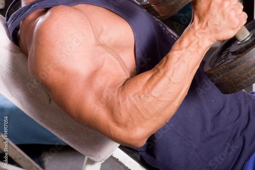 Bodybuilder training his bicep Wallpaper Mural