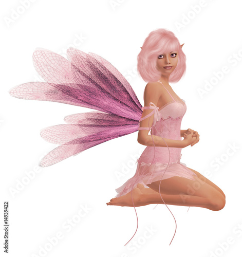 Photo  Pink Fairy