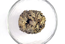 Rose Of Jericho In Dry State