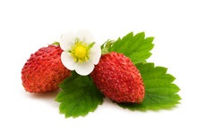 Wild Strawberries On White Bac...