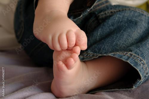 Poster de jardin Vache Los pies del bebe