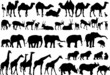 african animals silhouettes
