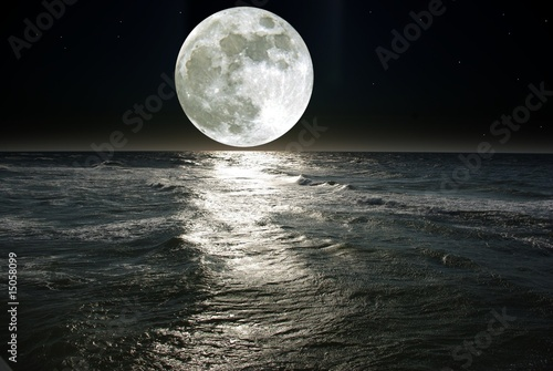 Printed kitchen splashbacks Night moon