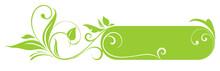 Floral Green Frame