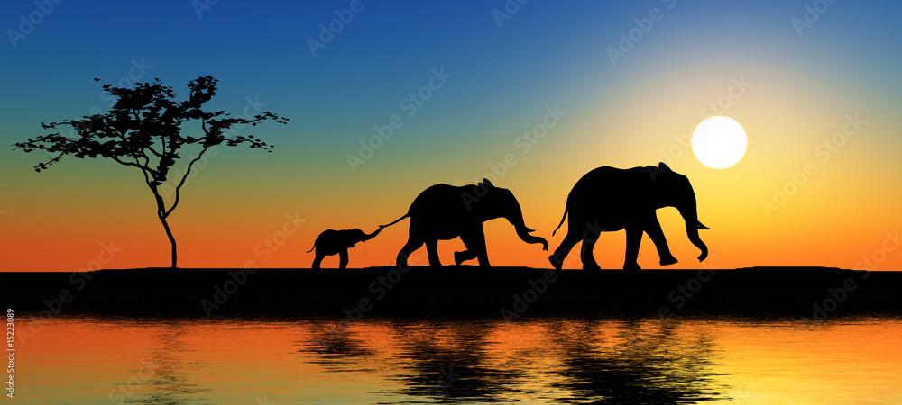 Fototapety, obrazy: Family of elephants.