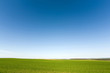 canvas print picture Green crops  and cloudless sky