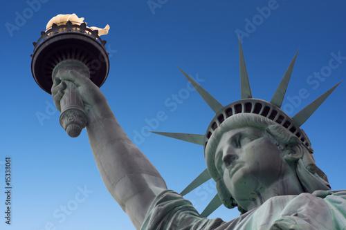 Foto-Kassettenrollo premium - Statue of liberty and arm (von Darrenp)