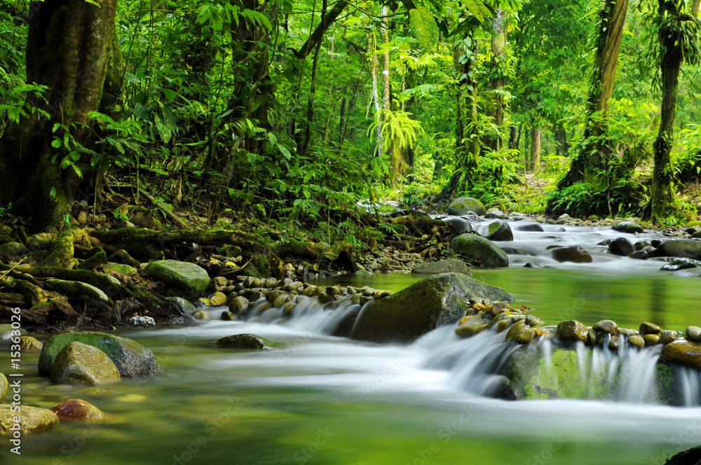 Fototapeta Mountain stream