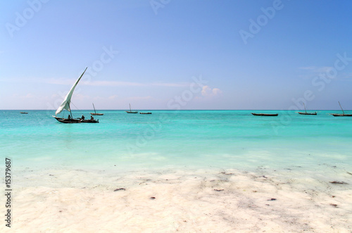 Poster Zanzibar Fishing Trip
