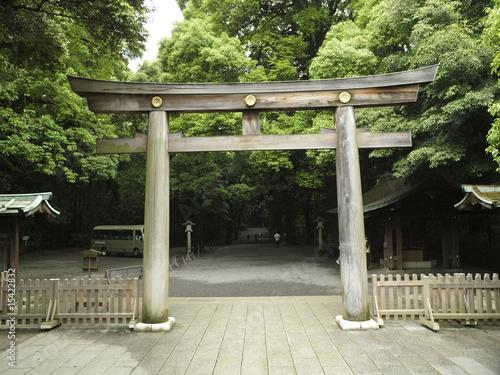 Fotografie, Obraz  Santuario sintoista en Tokio