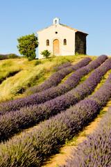 Panel Szklany Podświetlane Lawenda Plateau de Valensole, Provence, France