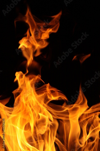 Photo Stands Fire / Flame flammes vives