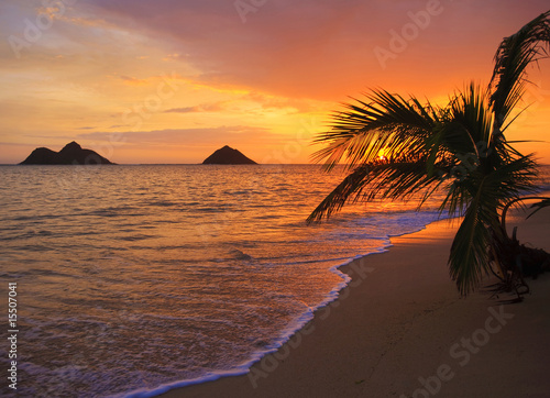 Foto-Kissen - Pacific sunrise at Lanikai beach in Hawaii (von tomas del amo)