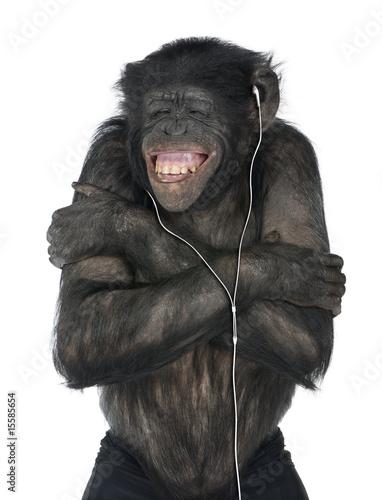 Foto op Plexiglas Aap Monkey listening music