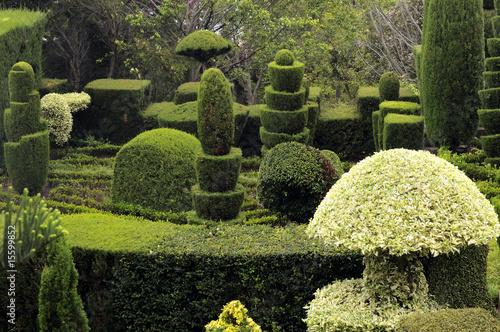 Cadres-photo bureau Jardin Jardin extraordinaire de Madère