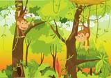 Fototapeta Dla Dziewczynek roślina małpa