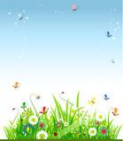 Fototapeta Dla Dziewczynek zielony trawa niebo
