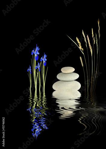 Fototapety, obrazy: Zen Garden Fantasy