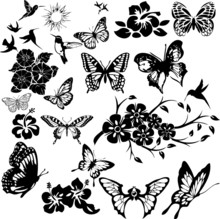 Butterfly Collage 2 (vector)
