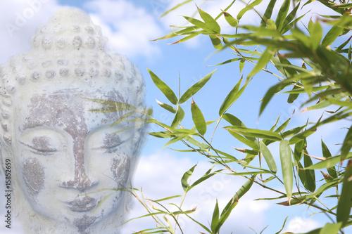 Doppelrollo mit Motiv - buddha with bamboo