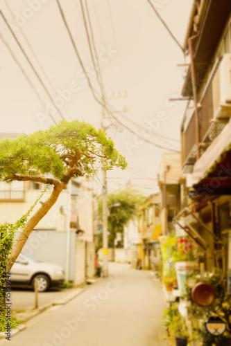 Fényképezés  住宅
