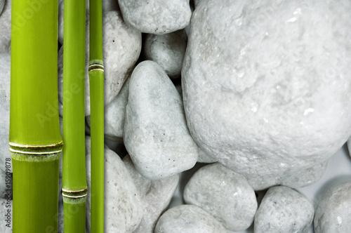 Doppelrollo mit Motiv - Bambus auf Steinen