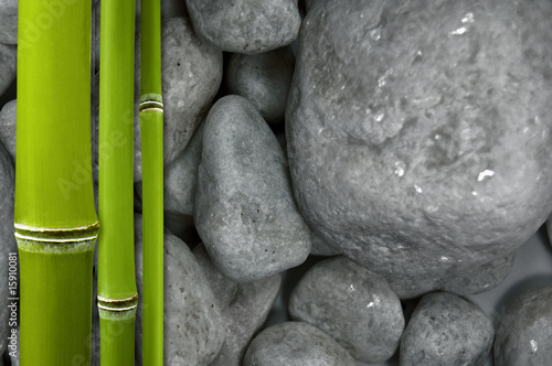 Bambus Auf Steinen Buy This Stock Photo And Explore Similar Images