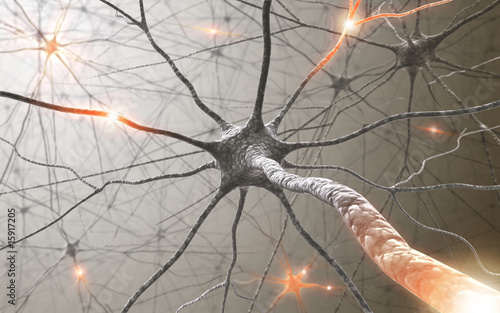 Fototapeta Inside the brain. Concept of neurons and nervous system.