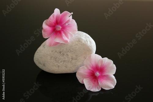 Plissee mit Motiv - Stein mit Blüten 1