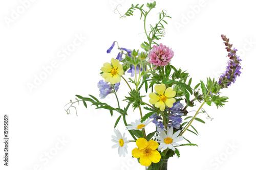 Fotografia, Obraz Wild Flowers
