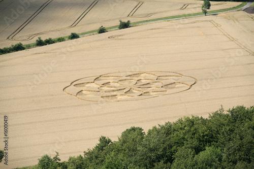 Türaufkleber UFO Kornkreis im Getreidefeld