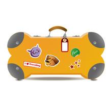 Pet Travel Baggage