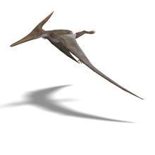 Dinosaur Pteranodon