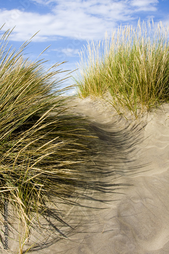 "Foto-Schiebegardine Komplettsystem - ""Dune"""