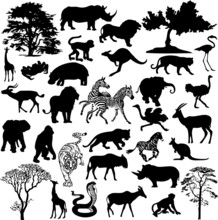 African Animal Collage (vector)