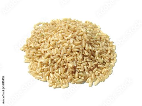 Fotografía  riz complet