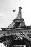 Fototapeta Wieża Eiffla - Effel tower