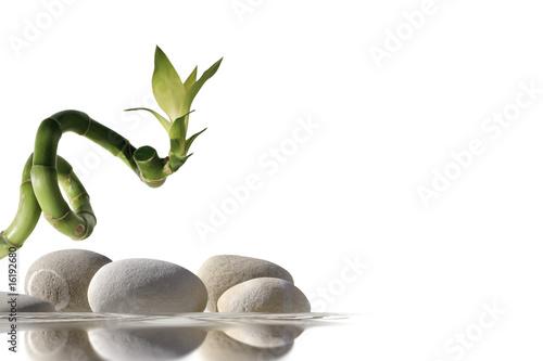 Plissee mit Motiv - Bambou et galets