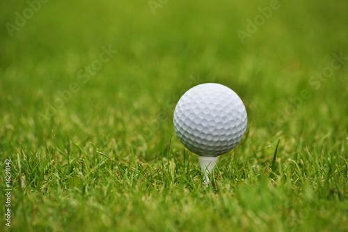 Poster Golf Golf ball in grass, close up