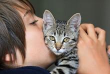 Adolescent Embrassant Son Chaton