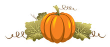 Tasty And Healthy Vegetable Pumpkin