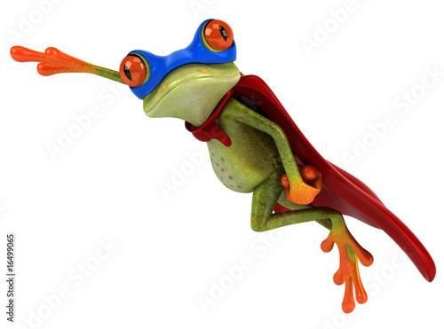 Super grenouille Canvas Print