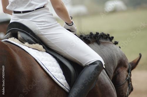 Foto auf Gartenposter Reiten Woman on a horseback