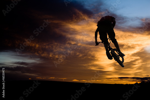 Canvastavla bmx jump to sky2
