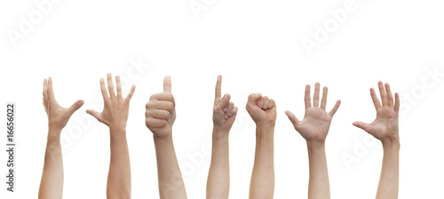 Fotografie, Tablou human hands