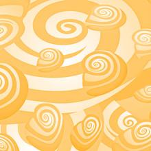 Conchiglie E Spirali