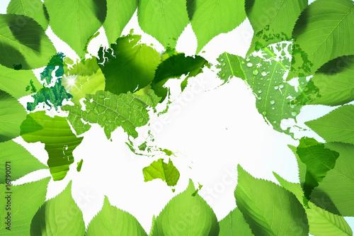 Fotobehang Zwavel geel 新緑と世界地図
