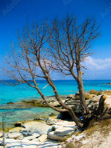 Foto-Schiebegardine Komplettsystem - Corsica